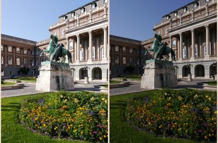 Královský palác VIII